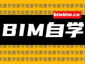 BIM自学这样入门